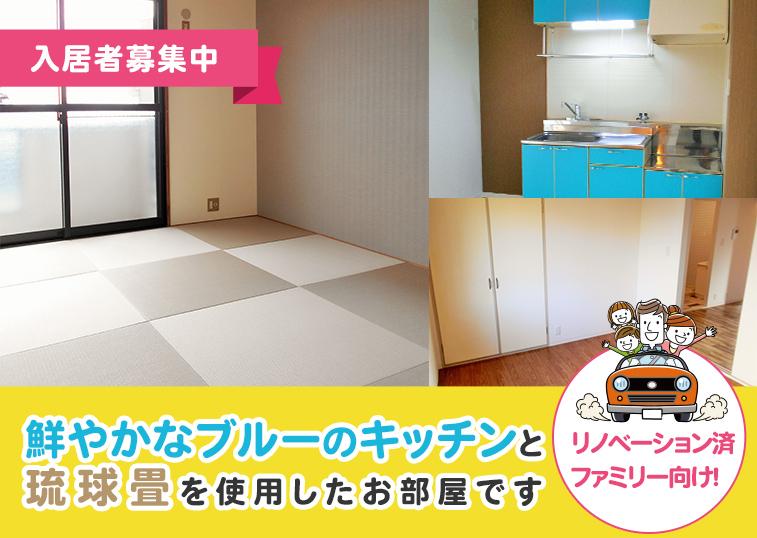 入居者募集中!リノベーション済 ファミリー向け!鮮やかなブルーのキッチンと琉球畳を使用したお部屋です