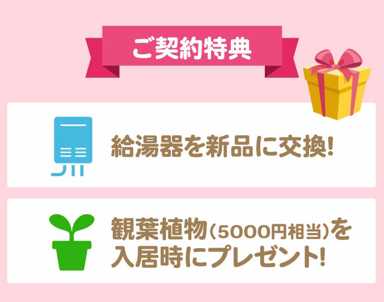 ご契約特典!給湯器を新品に交換!観葉植物(5000円相当)を入居時にプレゼント!